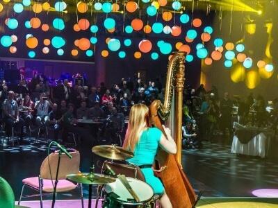 harp number